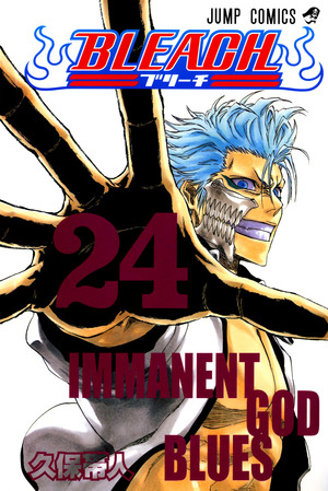 Bleach_cover_24