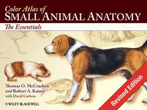 1_color_atlas_of_small_animal_anatomy_the_essentials-page-001