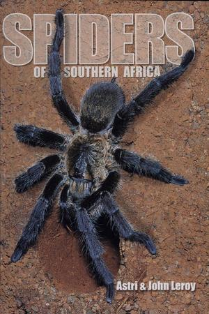 Spiders_of_southern_africa-page-001