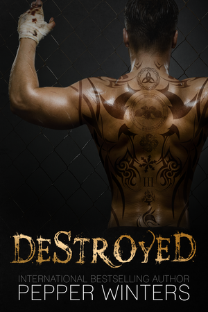 Destroyed_e-book_cover_(2)_(1)
