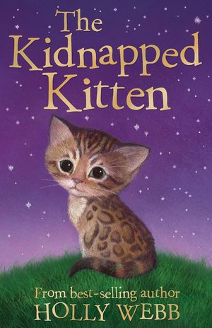Holly_webb_the_kidnapped_kitten