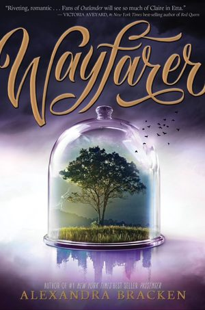 Wayfarer_final_cover-678x1024