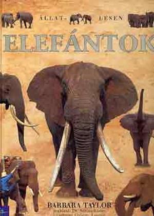 elefántok randi